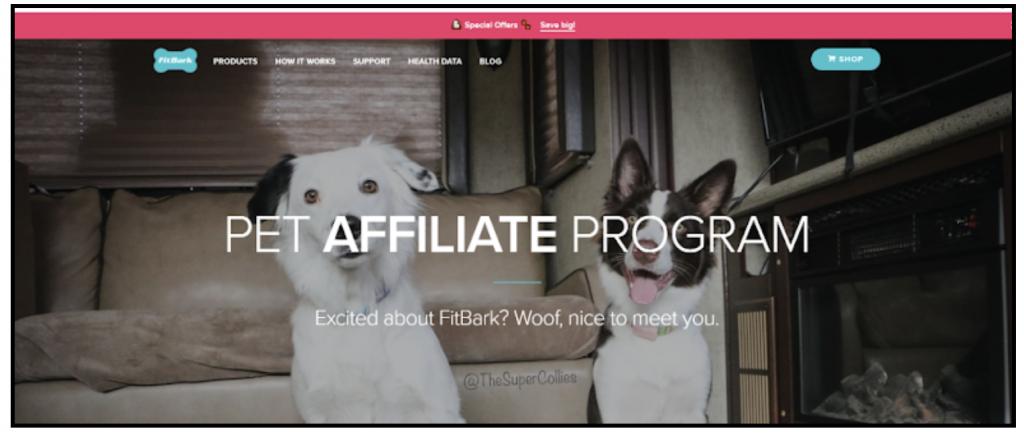 best affiliate programs for pet blog